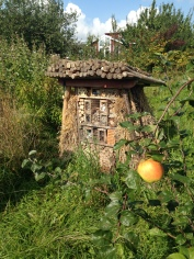 """A """"bug hotel"""" in a sustainable community"""