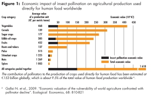 This UNEP chart portrays the vast importance of bees for food production.